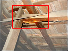 Termites have destroyed the structural integrity of the roof frame and urgent repairs are required.